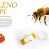 Banner veleno d'api