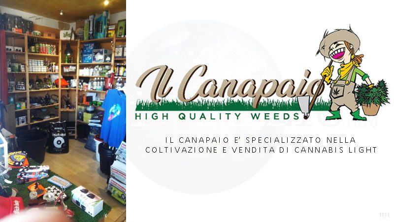 Il canapaio vendita di cannabis light Olbia